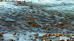 River prut 16 Stock Footage