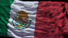 Mexico flag ripple Stock Footage
