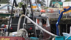 Alaska fishing fleet, boats fish sucked from hole Stock Footage