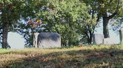 Stock Video Footage of grave stones