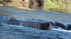 River water flowing over rocks - stock footage