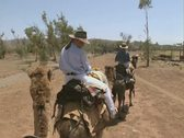 Camera view riding a camel Stock Footage