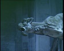 The Holy Cross Cathedral of Schwabisch Gmund. Gargoyle 5 Stock Footage