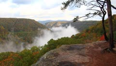 Fog in the mountains of wv Stock Footage