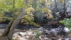 Arbuckle creek Stock Footage