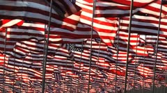 sea of flags - stock footage