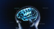 Stock Video Footage of blue head brain with code  for medical and technology concept