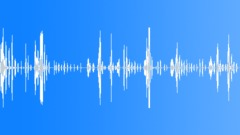 HUMAN, LAUGH - sound effect