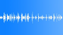 HUMAN, LAUGH Sound Effect