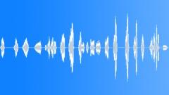 HUMAN, TALK Sound Effect