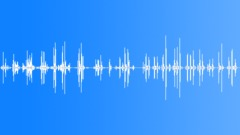 INDUSTRY, CARPET Sound Effect