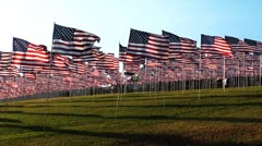 Flags shadows wind Stock Footage