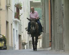 Man riding donkey up street Stock Footage