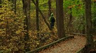 LP-GreatSwamp-A25 Stock Footage