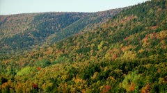Fall Footage 14 - H264 Stock Footage