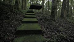 Bali Rainforest hut Stock Footage