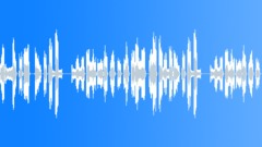 LEMUR - sound effect