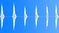 LION - sound effect