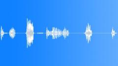 MONKEY, HOWLER - sound effect