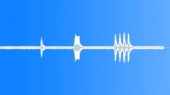 MOTORCYCLE, SUZUKI 1100 Sound Effect