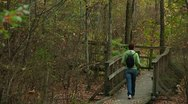 LP-GreatSwamp-A57 Stock Footage