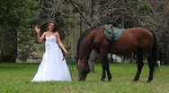 Beautiful bride and horse walking in the park Stock Footage