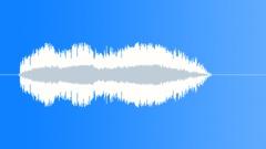 NOISEMAKER, DUCK CALL - sound effect