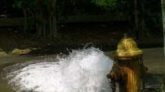Open water street yellow fire hydrant gushing water + audio 3 Stock Footage