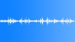 POLAND, SOCCER - sound effect