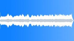 POLISHER, FLOOR - sound effect