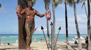 Duke Kahanamoku Statue, Waikiki, Oahu (tilt) Stock Footage