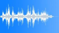 REPTILE, LIZARD Sound Effect
