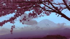Mount Fuji Colorful 10 - Japan. Cherry blossom. Sakura Stock Footage