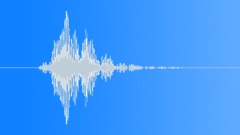 RIDING CROP, SWISH Sound Effect