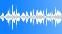 SEAL - sound effect