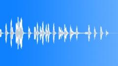 SEA LION - sound effect