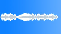 SIREN, POLICE - sound effect