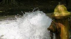 Street Fire Hydrant  720p v3 Stock Footage
