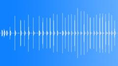 SQUIRREL - sound effect