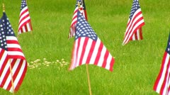 Memorial Flags at National Cemetery; Zoom to Wide 2 Stock Footage
