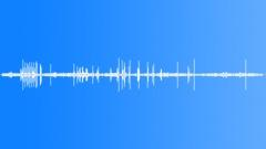 SWANS - sound effect