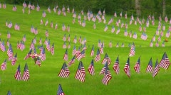 Memorial Flags at National Cemetery; Zoom to Wide 3 Stock Footage