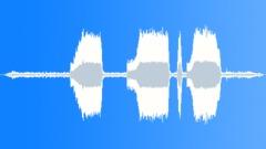 TRAIN, LOCOMOTIVE - sound effect