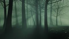 Halloween Haunted Forest Stock Footage