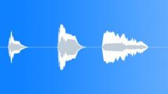 Stock Music of Ethnic ASIA 14 flute (x3)