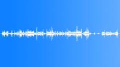 TURTLE Sound Effect