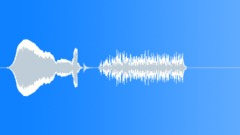 WALKIE TALKIE - sound effect