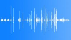 WOOD, CREAK Sound Effect