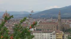 Santa Maria del Fiore, Florence, Italy Stock Footage