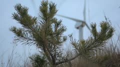 Firtree against the working windmill Stock Footage
